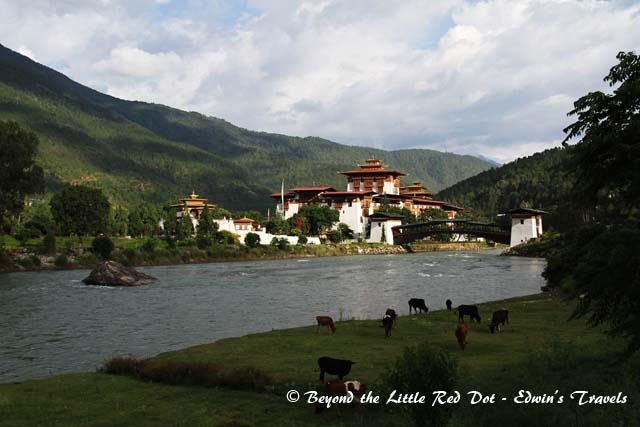bhutan_punakha_dzong