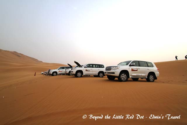 After about an hour of bone jarring dune bashing, we stopped to rest and look at the desert scenery.
