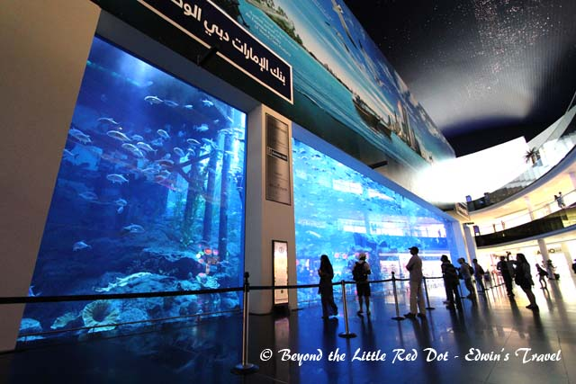 There is even a huge aquarium inside the mall. It was the world's largest until Marine SEA in Singapore came along.
