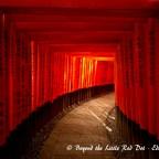 Tokyo to Kyoto 2013