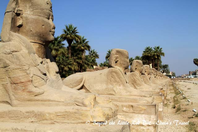 More Sphinxes line the entrance to the temple.