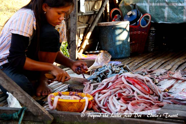 Sea snakes are a food source for the locals. The woman is skinning the snakes.