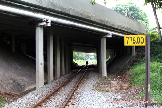 My starting point was near Buona Vista Road, where the track runs under the main road.