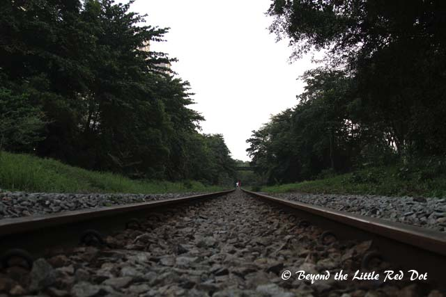 The tracks were silent in the early morning.