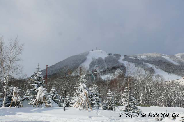A view of the ski slopes at Rusutsu.
