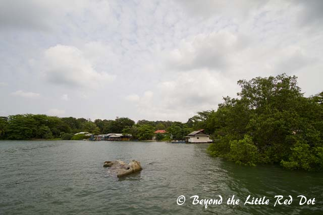 Pulling into Pulau Ubin's jetty.