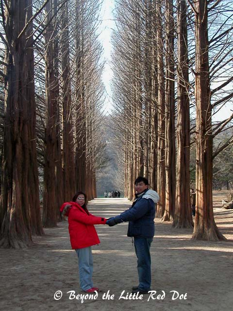 Nami Island has beautiful tree lined avenues and these were also featured in the drama. Again, another scene from the drama of which I'm clueless.