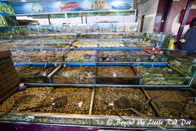 More seafood than you can find at an aquarium.