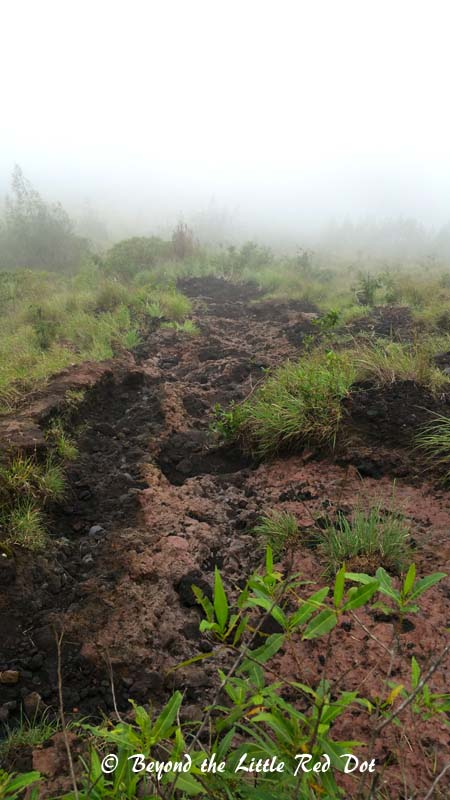 Different coloured lava flows form natural trails to follow, but they can be slippery and steep.