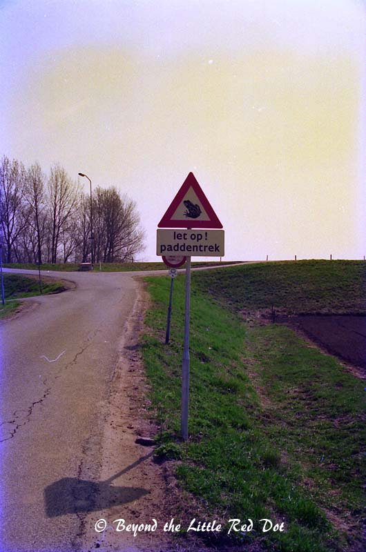 Another sign on the Polders which caught my attention. Eh... frogs crossing the road?