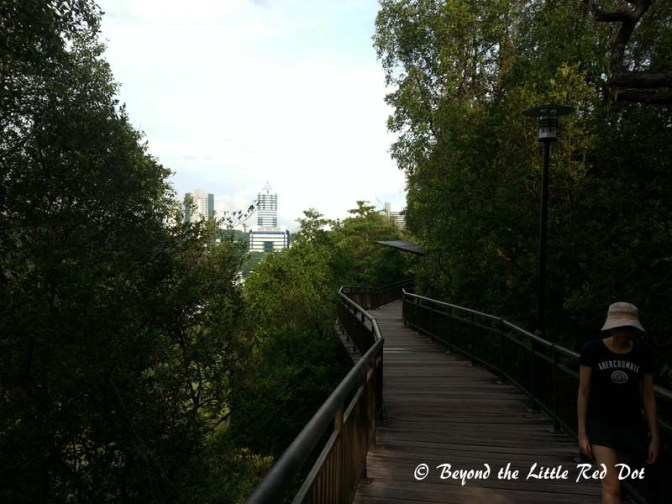 Canopy Walk that leads down HortPark.