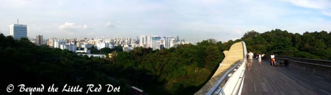 Good views of the city from Henderson Waves Bride.