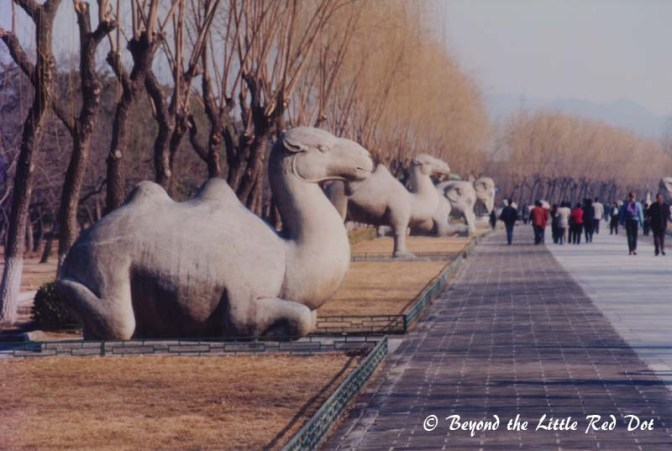 More of the stone animal statues. The camels caught my eye since they only live in the deserts of western China and are not native to northern China.