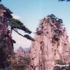 Trekking the Yellow Mountains (黄山)