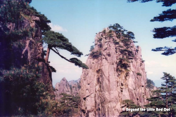 Huangshan is also famous for their pine trees which grow right out of the rock. Many of them are also several hundred years old.