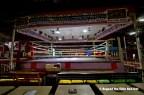 Muaythai Fight Club