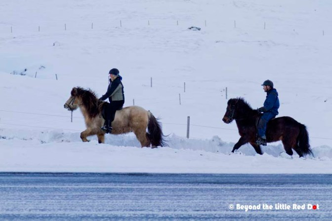 Riding Icelandic horses around Kirkjufell.