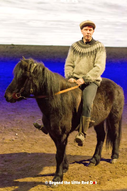 An introduction about the Icelandic horses and a short show.