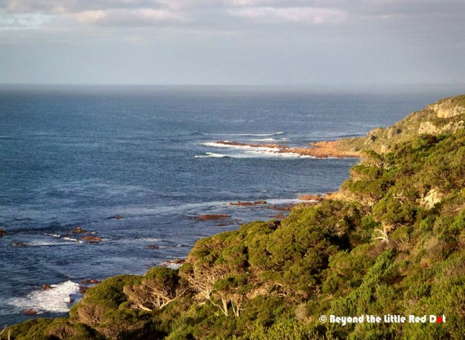 The view of the Indian Ocean from Cape Naturaliste.