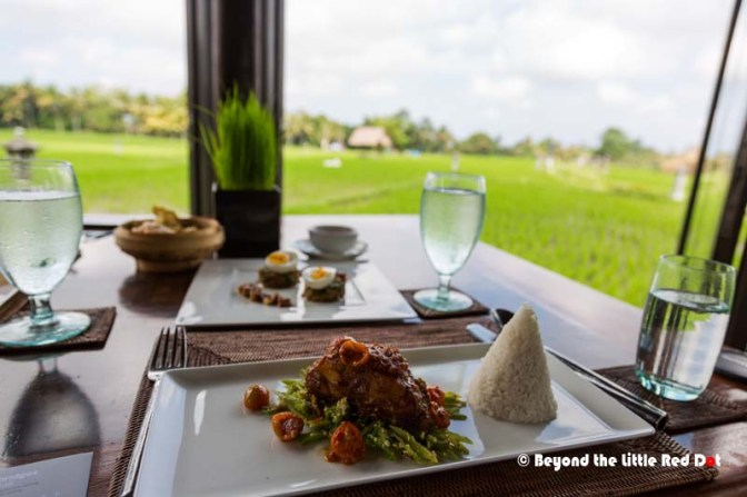 Fine dining while sitting in a rice field.