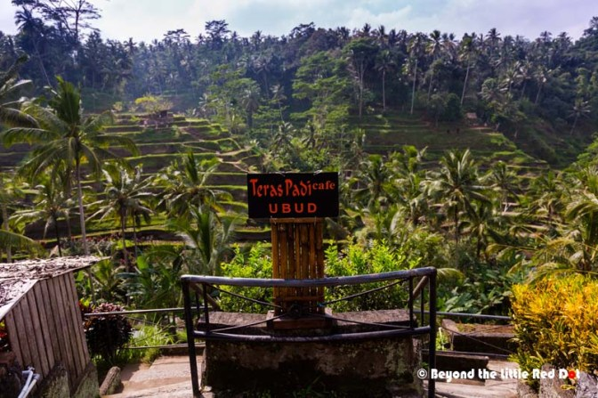 The whole place is very touristy, with cafes and small restaurants lining the road and the side of the hill facing the rice terraces.