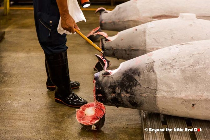 After inspecting each tuna, they will decide what price they want to pay for it.