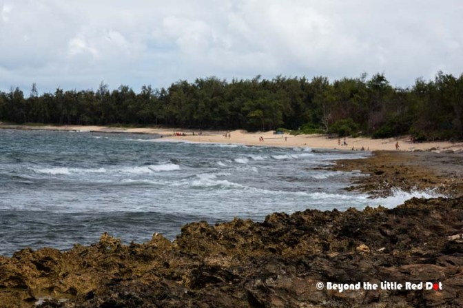 The lava rock landscape and big waves here gives turtle Bay it's exotic look and it was used to film the TV series Lost.