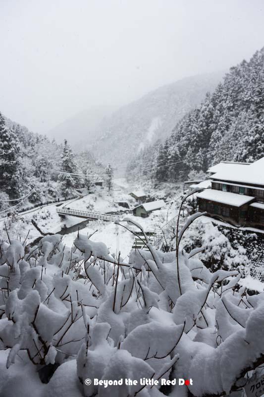 snow-monkey-valley