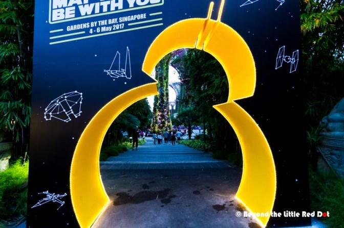Star_Wars_Day-15