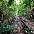 The Hidden Railway